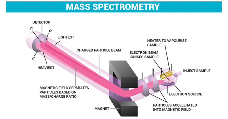 Principle-of-Mass-Spectrometry-MS