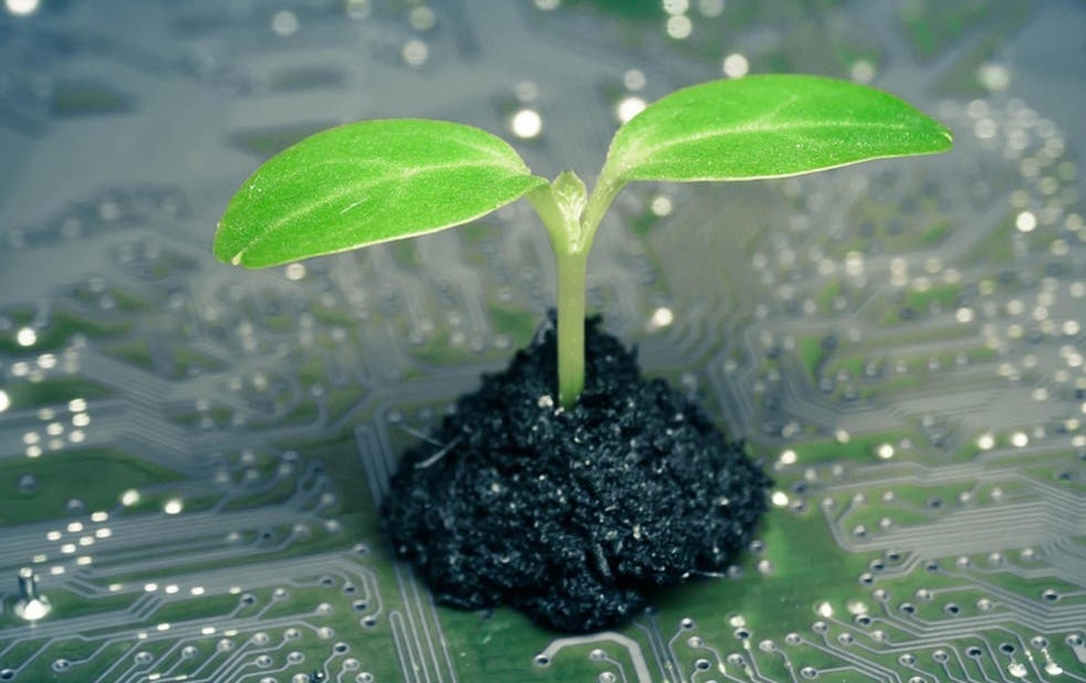 Seedling Technology Weeks